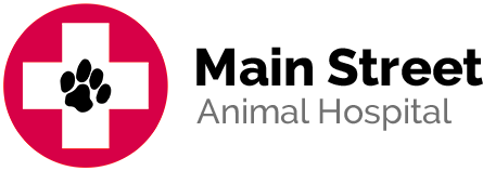 main street animal hospital logo